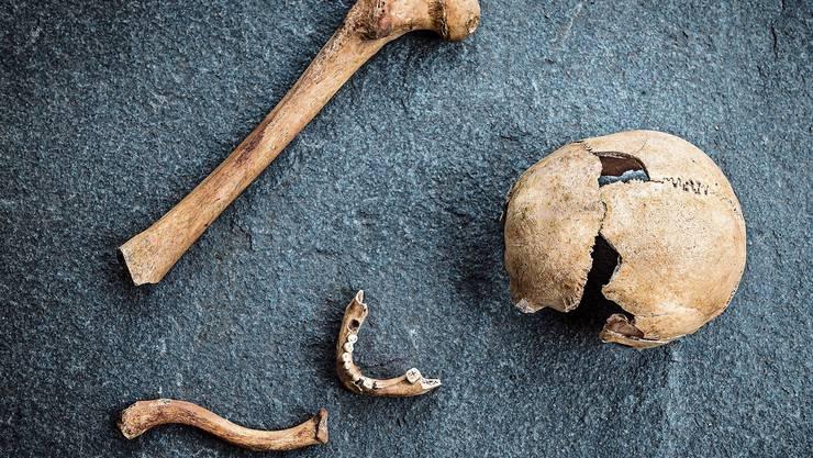 Vor zehn Jahren wurden bei der Richtstätte Knochen gefunden, die heute in der Kantonsarchäologie aufbewahrt werden.
