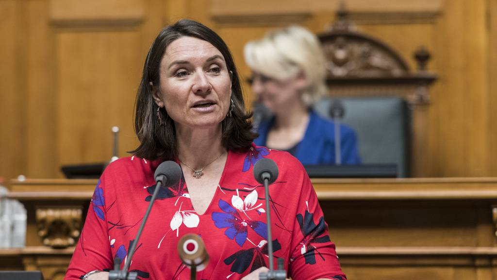 Wegen Quarantäne: Erstes Mitglied des Nationalrates stimmt von zu Hause ab