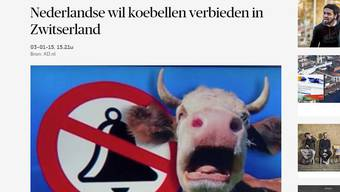 Screenshot eines Niederländischen Newsportals.jpg