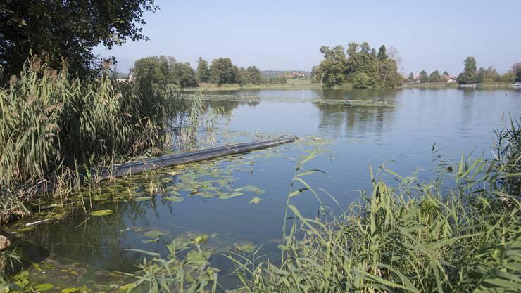 Zurzeit wird der See saniert.