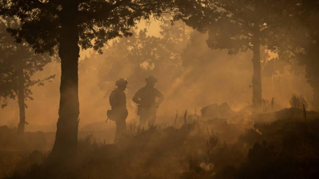 Waldbrand in Nordkalifornien breitet sich aus