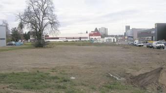 Im Vordergrund wird Geiser agro.com ihre Garage bauen, rechts der Neubau der Calag AG und im Hintergrund der Bau der Firma Rudolf Geiser AG, die Interesse an der Wiese dazwischen bekundet. Foto: uby