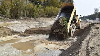 An der Aare bei Winznau: Das mit Neophyten belastete Aushubmaterial wird unter Wasser versenkt und sofort zugedeckt, danach mindestens 5 Meter hoch mit sauberem Erdmaterial überdeckt.