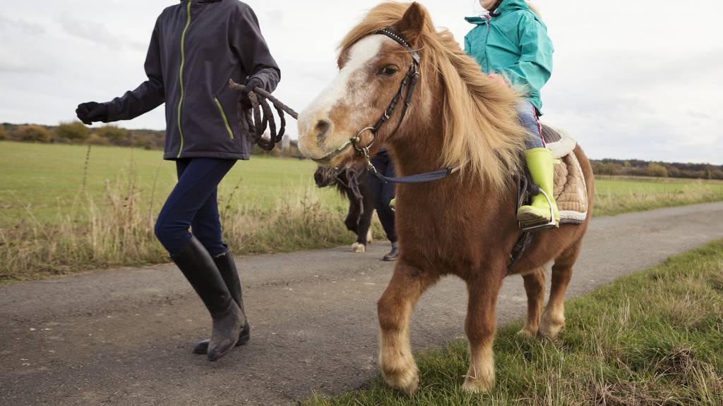 Pony ins Aawasser gefallen – Suche eingestellt