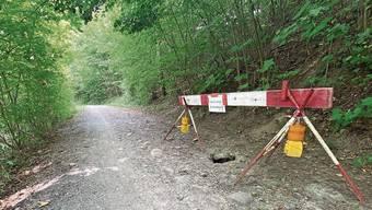 Das Loch im Spazierweg entlang der Bünz in Dottikon wurde gesichert – «Achtung Biberbau» stand auf dem Schild.