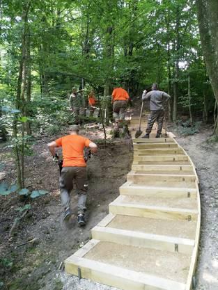 Die Zivilschützer erneuerten eine in die Jahre gekommene Treppe beim Vita-Parcours in Starrkirch-Wil.