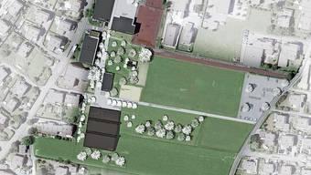Die Sporthalle in Staufen ist in unmittelbarer Nähe des Schulgebäudes geplant. Wo heute noch Wiese ist, soll bald die Sporthalle stehen.