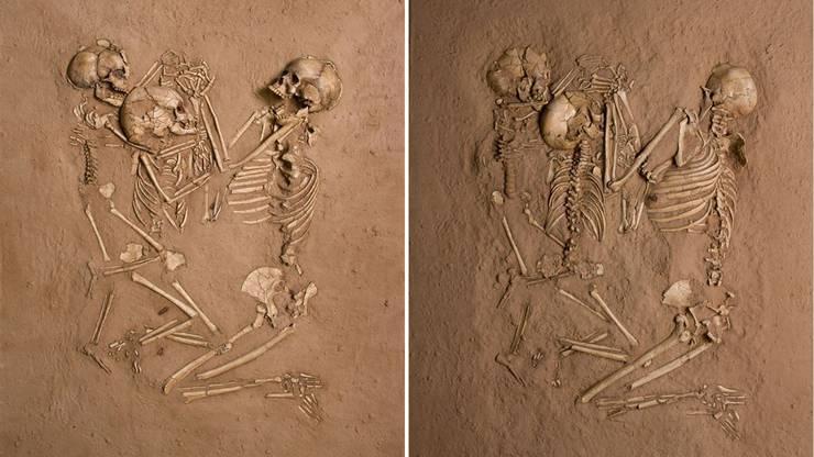 Sereno restaurierte die drei Skelette und präparierte sie in zwei Ansichten.