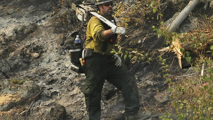 Gefährlicher Kampf gegen Waldbrände: Drei Feuerwehrleute sterben im US-Bundesstaat Washington