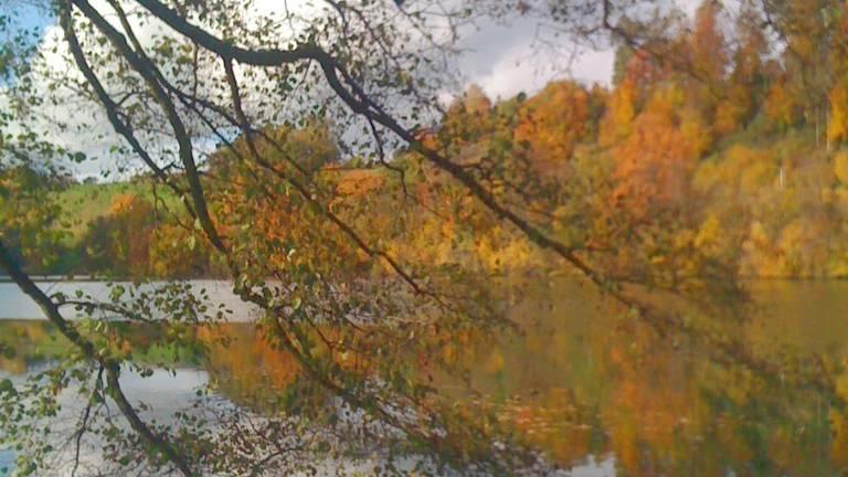 Der Herbst ist da! Auf was freut ihr euch?