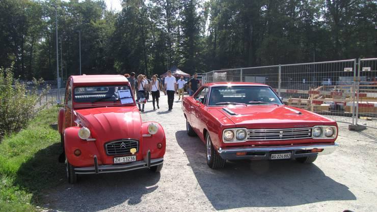 Zahlreiche Autos unterschiedlicher Marken fuhren auf.