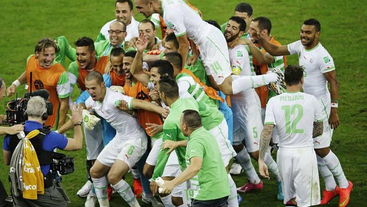 Die algerischen Spieler freuen sich über die erste WM-Achtelfinal-Qualifikation Algeriens