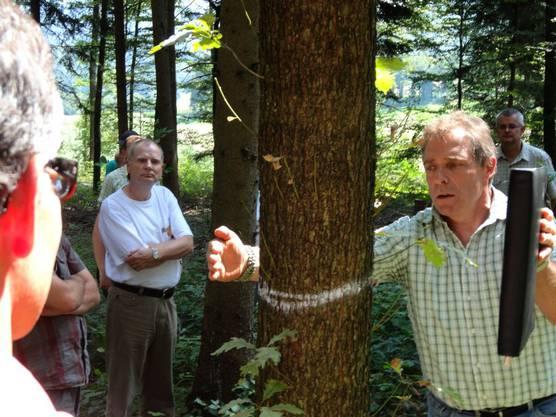 Unterwegs im Eichenwaldreservat mit Förster Werner Habermacher aus Wölflinswil