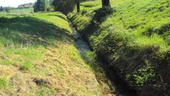 Kanalisierter Mülibach mit Längs- und Querverbauung.