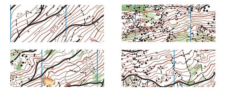 Vier Ausschnitte der alten Roggen-Karte, die im Frühjahr von Alexander Schwab auf den neusten Stand gebracht wurde.