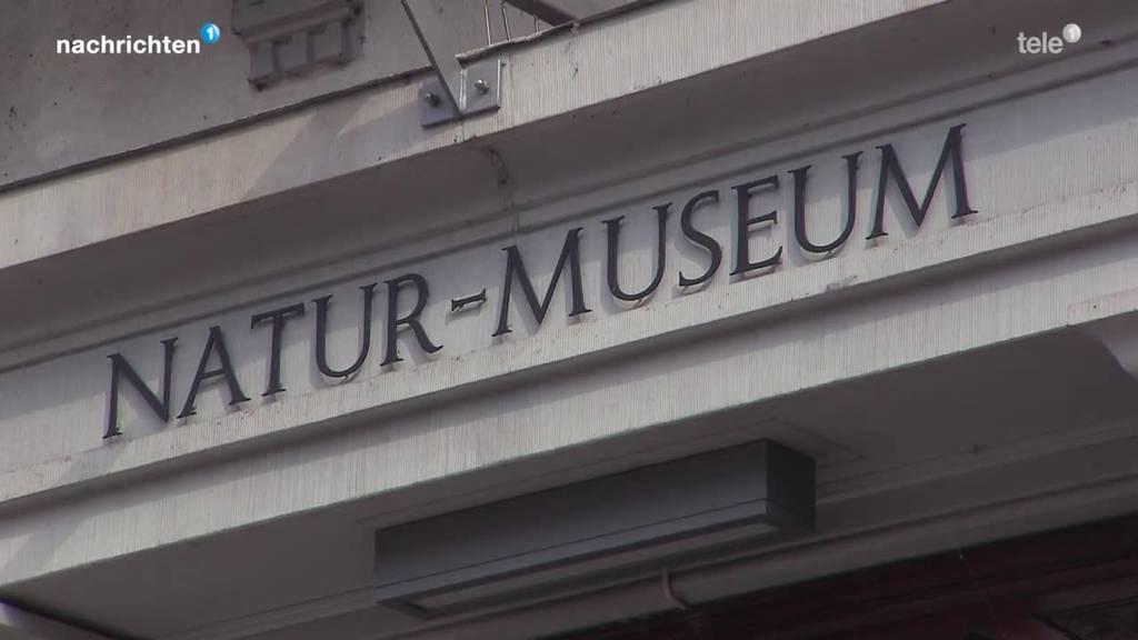 Museum hat ein Konzept aber keinen Standort
