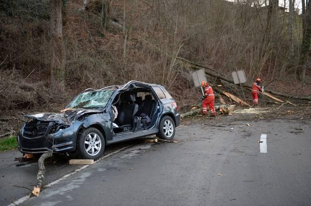 Tragischer Unfall in Andelfingen: Das Auto wurde von einem umstürzenden Baum getroffen.