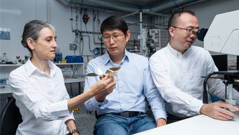 Laura Heyderman und Tian-Yun Huang betrachten ein Modell des Origami-Vogels, während Jizhai Cui den Roboter unter dem Mikroskop beobachtet.