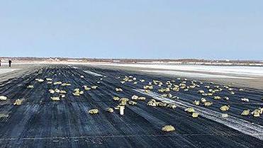 Goldregen in Russland