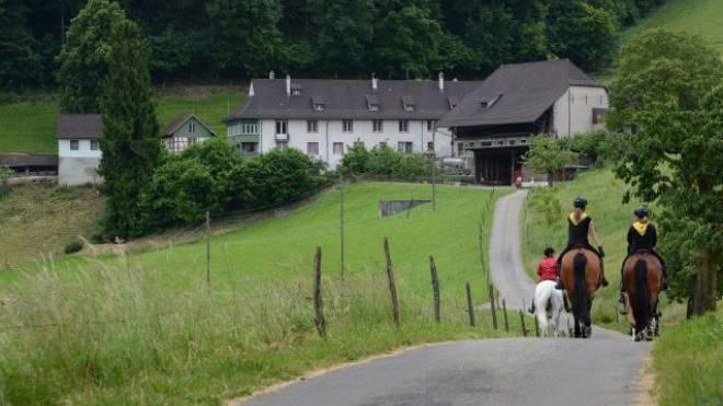 Der mittelalterliche Gutshof Neu Schauenburg oberhalb von Pratteln wechselt den Besitzer, falls die Umbaupläne bewilligt werden. Foto: Juri Junkov