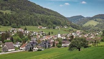 Holderbank soll künftig Mitglied beim Zweckverband Forst Thal werden. An der Gemeindeversammlung wurde darüber heftig diskutiert.