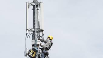 Ob der Mobilfunkanbieter Salt in Schupfart eine Antenne bauen kann, ist weiterhin offen. (Symbolbild)