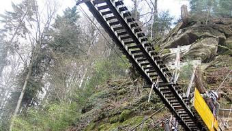 Wird für 200 000 Franken erneuert: die Hängebrücke über den Sensegraben.