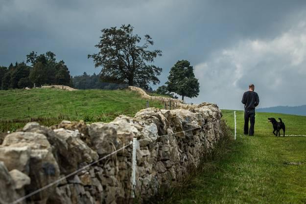Zen des Steineschichtens: Trockenmaurer Oliver Bürgi und sein Hund Siyah