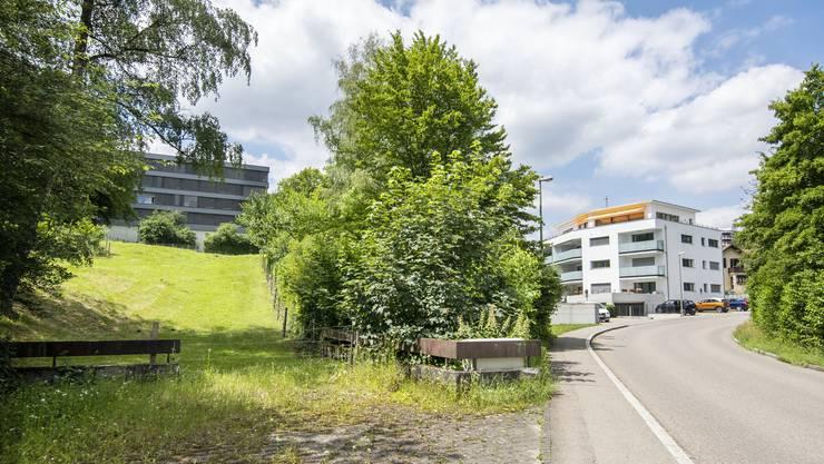 Auf der Wiese links soll der Neubau der Kinderpsychiatrie entstehen, aus dem Haus rechts stammen die Einsprecher.