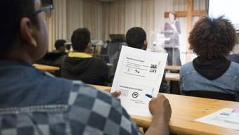 Kulturschule Brugg Interview