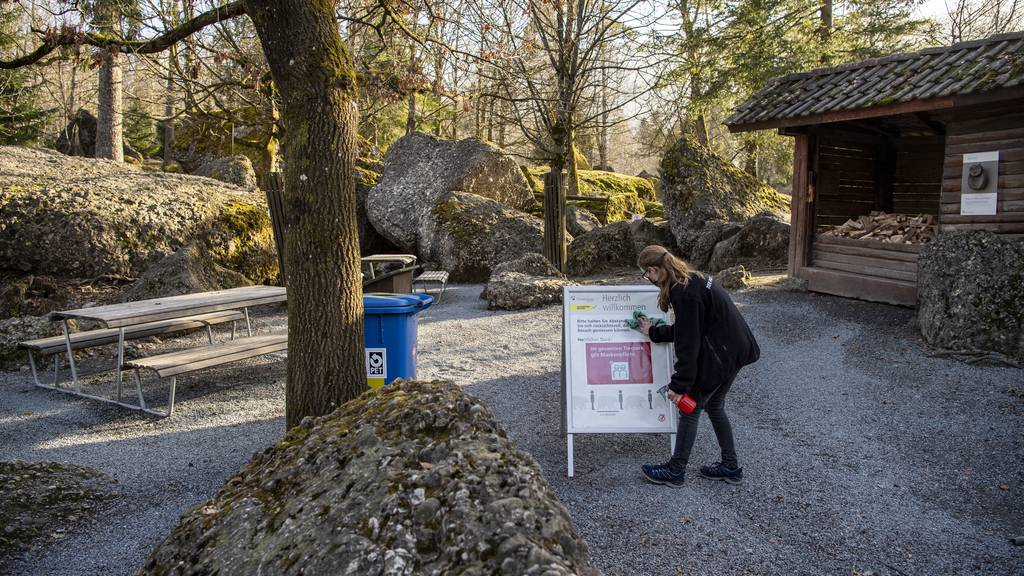 Museen und Zoos öffnen wieder – das musst du beachten