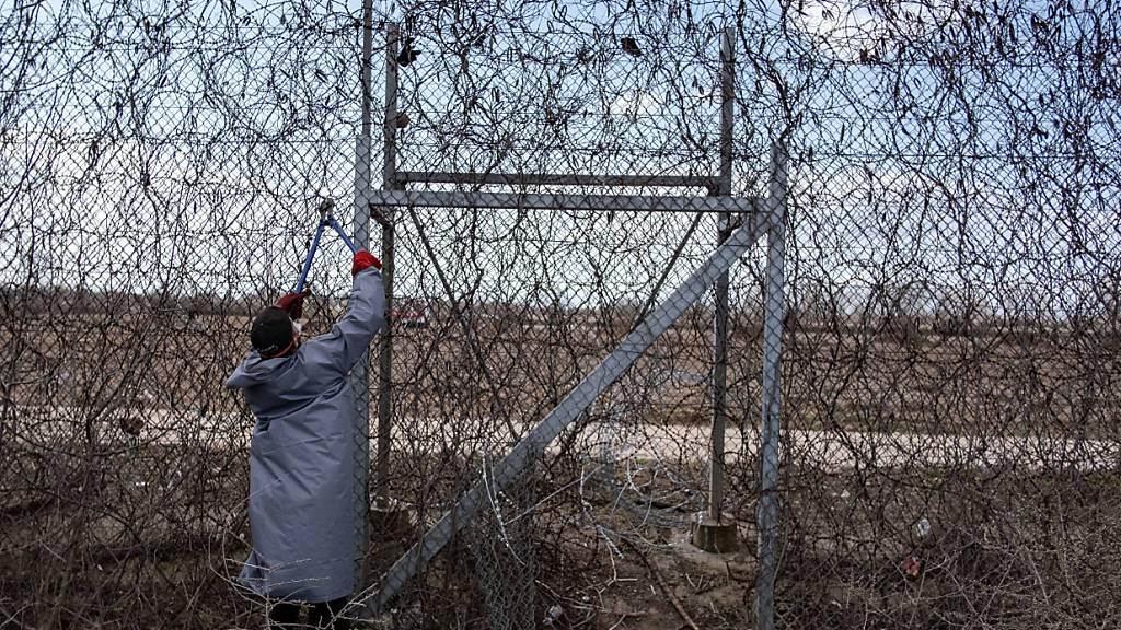 Migration: Grünen-Europapolitiker fordert Strafverfahren gegen Athen