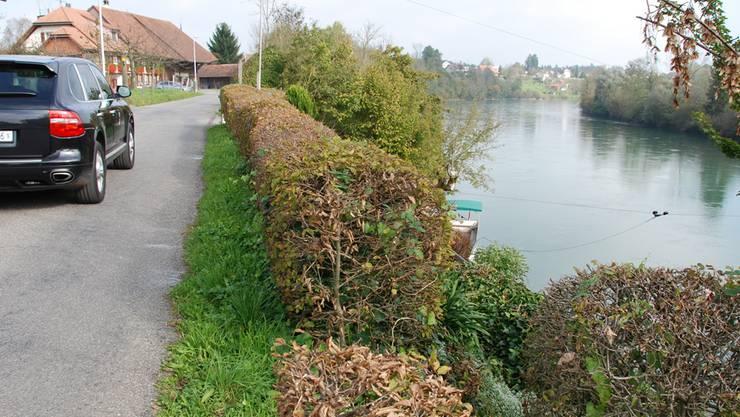 Die Fahrstrasse verläuft in diesem Abschnitt nahe an der Aare-Böschung, das Terrain hat sich denn auch in diese Richtung abgesenkt. Alois Winiger