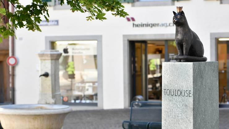 Toulouse als «König von Olten» thront in Originalgrösse auf dem Kaplaneiplatz.