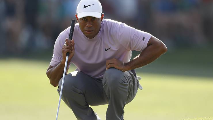 Tiger Woods - hoch konzentriert und für einmal in Rosa
