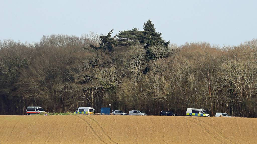 Polizeifahrzeuge stehen vor einem Waldstück in der Grafschaft Kent, nachdem dort die Leiche der vermissten Sarah E. gefunden worden sein soll. Nach dem Verschwinden der Frau in London ist ein Polizist festgenommen worden. Foto: Gareth Fuller/PA Wire/dpa