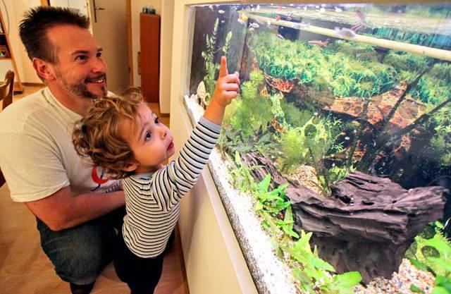 Väterhausleiter André Müller zeigt dem Sohn eines Bewohners das Aquarium im Untergeschoss.