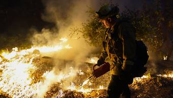Löscheinsatz in Boulder Creek, Kalifornien. Foto: Marcio Jose Sanchez/AP/dpa