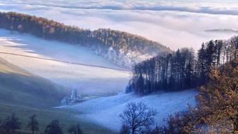 Blick vom Allerheiligenberg in die Niederungen und den Alpenkamm.