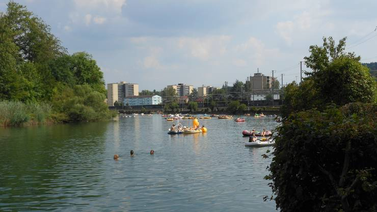 Sie schwimmen friedlich auf dem Wasser. Doch Gummiböötler mit Autos sorgen für Chaos im Altberg-Quartier. (Symbolbild)