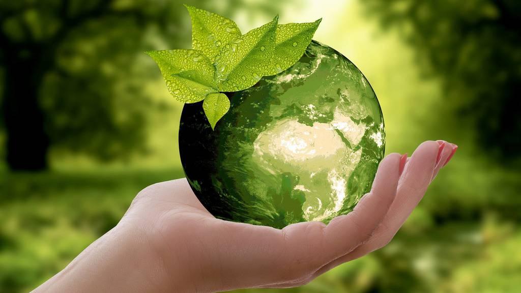 Wie sehe ich, ob eine Anlage nachhaltig ist?