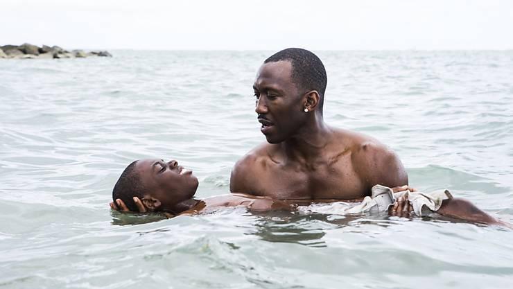 Für das neue Festival versprechen die Verantwortlichen Filme, die einen «unkonventionellen Blick auf Schwarze Lebenserfahrungen werfen». Bild: Szene aus dem US-amerikanischen Filmdrama «Moonlight».