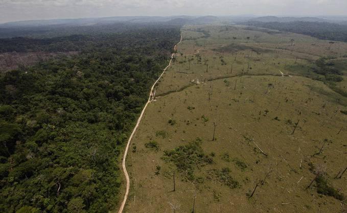 Je mehr Bäume gerodet werden, desto weniger CO2 können sie binden. Dieses Archivbild von 2009 zeigt das Ausmass der Rodungen im nördlichen Teil des Amazonasgebiets in Brasilien.