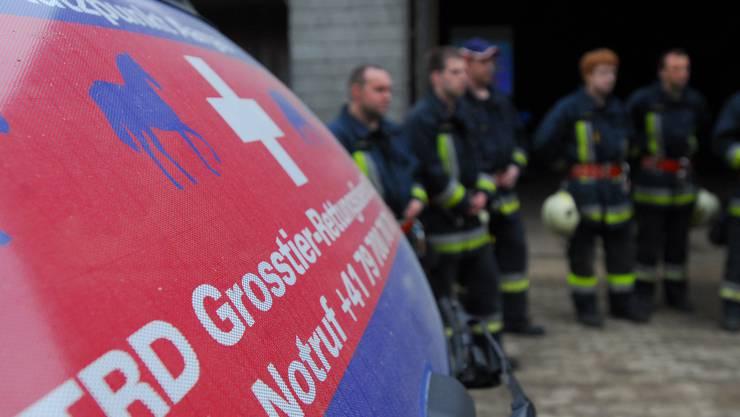 Feuerwehrübung zum Theam Rettung von Grosstieren