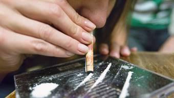 Um ein Kilogramm Kokain herzustellen, werden im südamerikanischen Dschungel rund 700 Kilogramm Koka-Blätter verarbeitet.