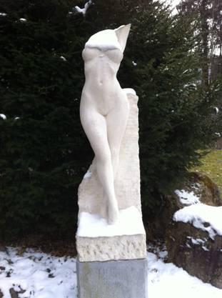 Edith Zeindler fotografiert in Bergdietikon und schreibt: Sie wird auch sehr froh sein, wenn der Frühling endlich kommt!
