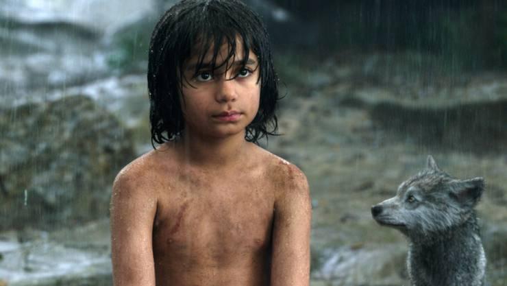 "Neel Sethi spielt Mogli in Jon Favreaus Neuauflage des Filmklassikers ""The Jungle Book"" (Archiv)"
