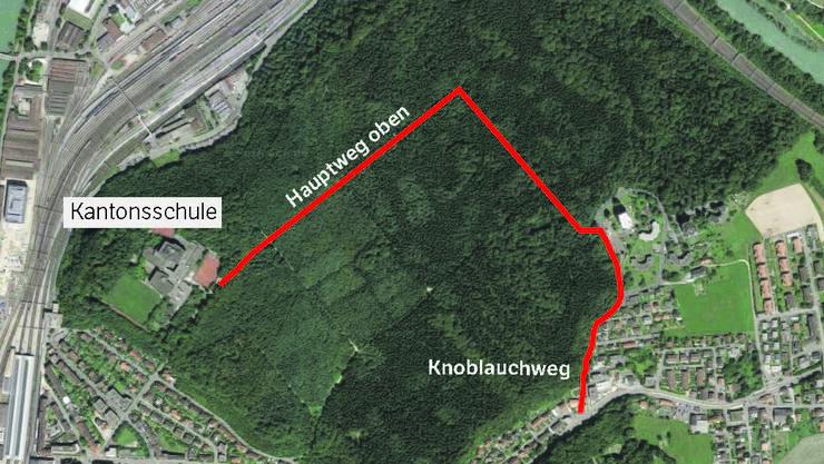 Die Lastwagen sollen durch den Hardwald via Meierhof-Quartier zur Kantonsschule-Baustelle gelangen.