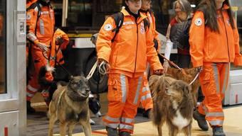 Das Schweizer Suchteam und Hunde sind wieder in der Schweiz