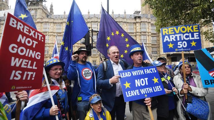 Das Schild bringt es auf den Punkt: «Der Brexit läuft nicht so gut, oder?»